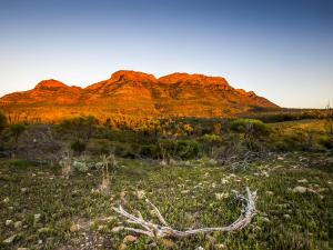 20150914 bdl Flinders Ranges-228